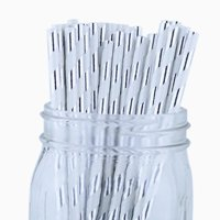 Just Artifacts Decorative Striped Paper Straws (100pcs, Striped, Metallic Silver)