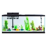 Aqua Culture 55-Gallon Aquarium Starter Kit With LED