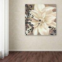 "Trademark Fine Art ""Winter White II"" Canvas Art by Color Bakery"