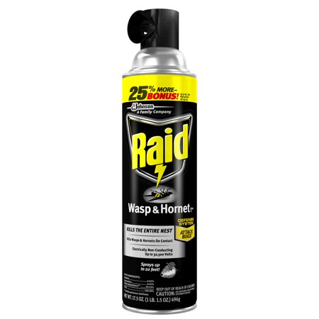 Raid Wasp & Hornet Killer 33, 17.5 oz (Best European Wasp Bait)
