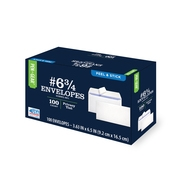 Pen+Gear #6-3/4 Security Tint Business Envelope with Peel & Stick Closure, 100CT