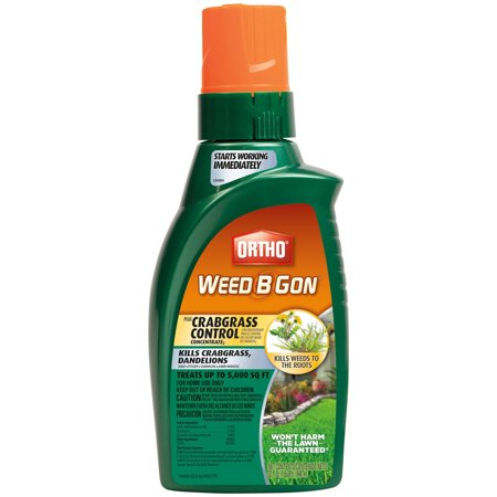 Ortho Weed B Gon MAX Plus Crabgrass Control Weed Killer for Lawns Concentrate, 32oz. - Halloween Weed