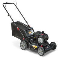 """Murray 21"""" Gas Push Lawn Mower with Briggs and Stratton Engine, Side Discharge, Mulching, Rear Bag"""
