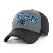 NFL Carolina Panthers Blackball Script Adjustable Cap Hat by Fan Favorite d7543a0b8