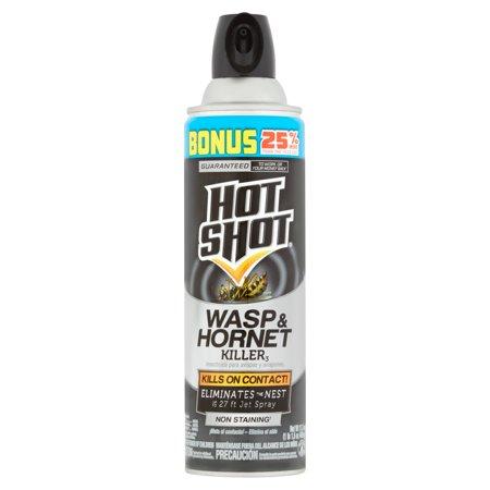 Hot Shot Wasp & Hornet Killer, Aerosol, 17.5-oz (Hornet Aerosol)