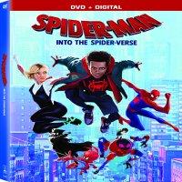 Spider-Man: Into the Spider-Verse (DVD + Digital Copy)