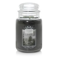 Deals on Yankee Candle Evergreen Mist Original Large Jar Scented Candle