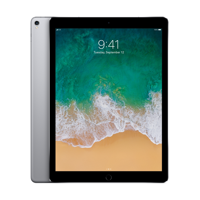Apple 12.9-inch iPad Pro Wi-Fi + Cellular 256GB Space Gray