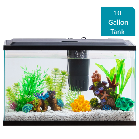 Aquarium Lighted Fish Tank - Aqua Culture 10-Gallon Aquarium Starter Kit With LED Lighting