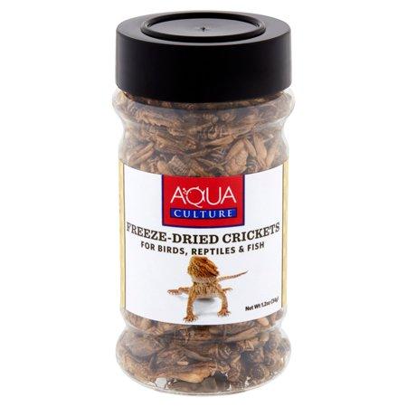 Aqua Culture Freeze-Dried Crickets for Birds, Reptiles & Fish, 1.2 -