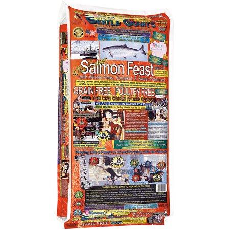 Dog Formula 8 Lb Bag (Gentle Giants Canine Nutrition Salmon Dry Dog Food, 18 Lb Bag )