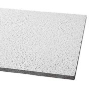 Armstrong Ceiling Tile 24 W 48 L 5 8