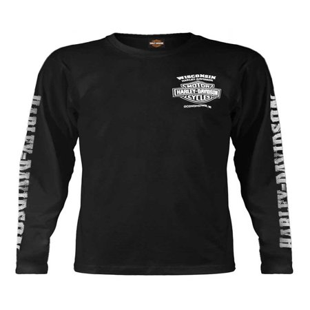 Men's Skull Lightning Crest Graphic Long Sleeve Shirt, Black, Harley Davidson - Lightning Window Graphic