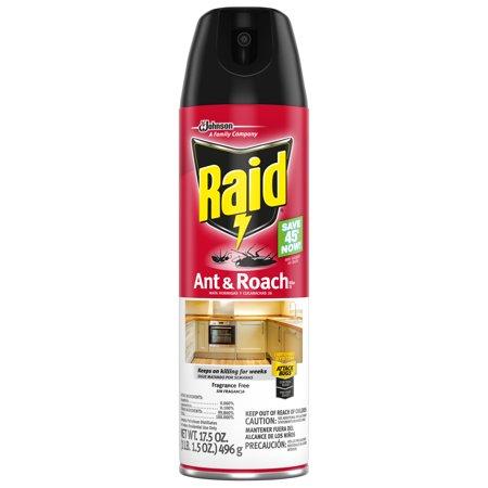 Raid Ant & Roach Killer 26, Fragrance Free, 17.5