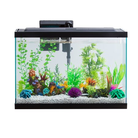 Aqua Culture 20-Gallon Aquarium Starter Kit With LED (Gallon Pre Charged Tank)