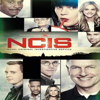 NCIS: Naval Criminal Investigative Service: The Fifteenth Season (DVD)