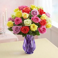 1-800-Flowers: Fresh Flowers - Two Dozen Assorted Roses with Purple Vase