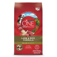 Purina ONE SmartBlend Natural Lamb & Rice Formula Adult Dry Dog Food - 31.1 lb. Bag
