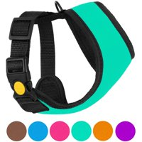 Soft Mesh Dog Harness Neoprene Puppy Padded Vest Adjustable Outdoor Pet Harnesses for Small Dogs, Turquoise