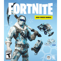 FORTNITE Deep Freeze Bundle, Warner, Nintendo Switch, 883929662616