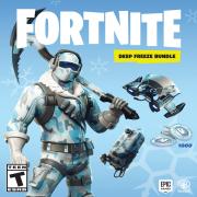 FORTNITE Deep Freeze Bundle, Warner, Nintendo Switch, 883929662616