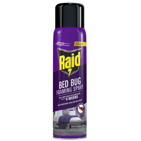 Bug Foam Shape (Raid Bed Bug Foaming Spray, 16.5 oz )