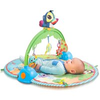 Little Tikes Baby Good Vibrations Deluxe Activity Gym