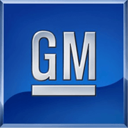 Oes Genuine Strut Bearing (Genuine OE GM Strut 22812985 )