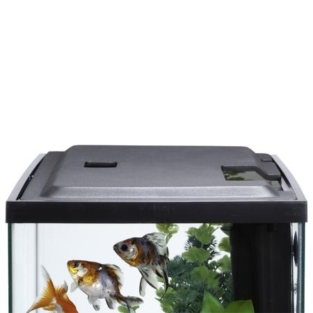 Fish Cover (Aqua Culture LED Aquarium Hood for 10-Gallon Aqua Culture)