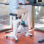 Flexispot Under Desk Bike Only Fully Assembly Portable Adjustable Resistance Leg Pedal Exerciser - Low Impact Desk Cycle - Fitness Equipmen