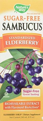 Nature's Way Sugar Free Sambucus Standardized Elderberry Syrup, 8 Oz