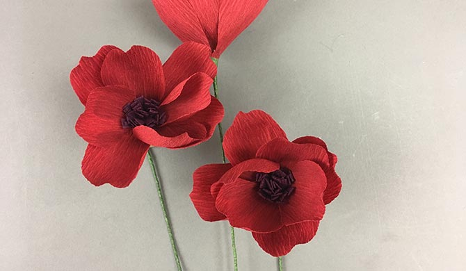 How To Make A Crepe Paper Cosmos Flower With Lia Griffith Walmart Com