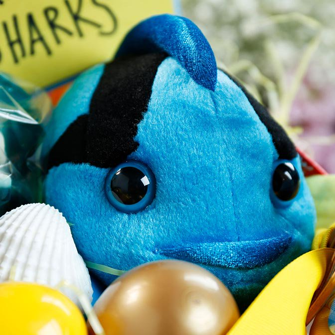 stuffed fish toy