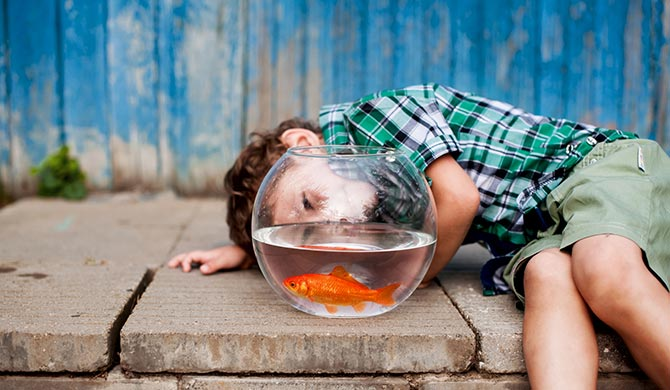 Make a Splash with these Aquarium Necessities!