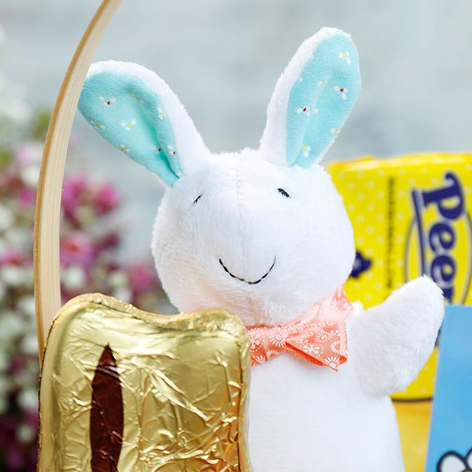 Pat the Bunny Stuffed Toy