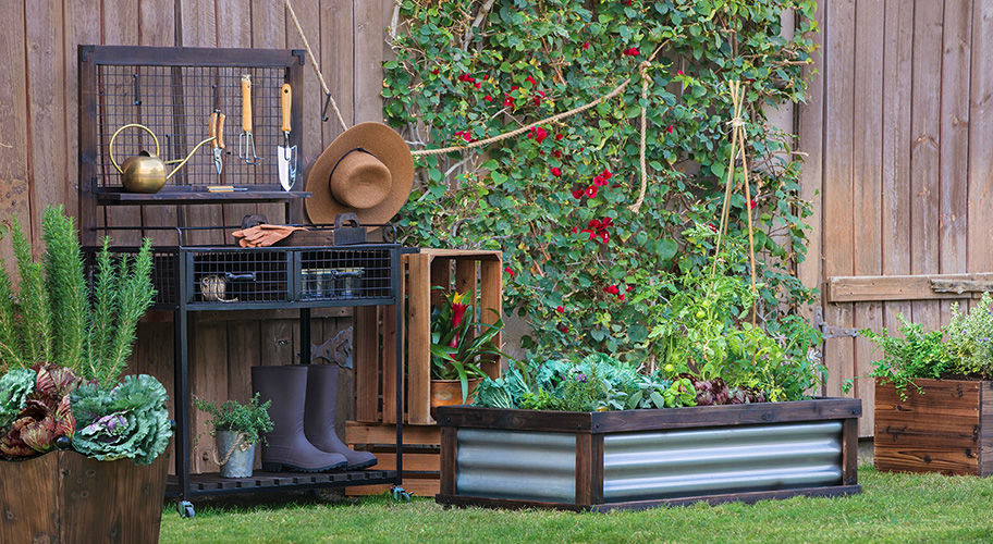 We can all have green thumbs. Whether you were born with a green thumb or are cultivating your skills, get the tools to help your garden grow. With clippers and rakes to keep it tidy and kneelers that let you work longer, it'll be blooming in no time